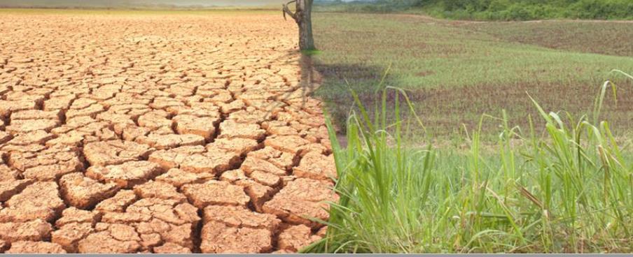 alteracoes climticas