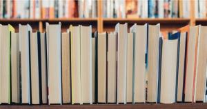 rede bibliotecas slide portal regional